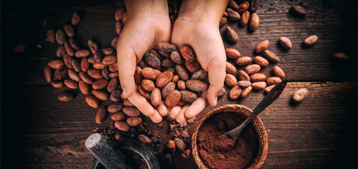 5 Health Benefits Of Raw Cacao Powder