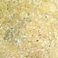 Dandelion Yellow Speckled
