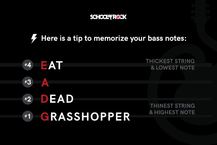 tip to memorize your bass notes Eat A Dead Grasshopper
