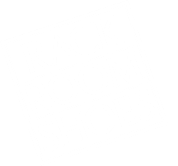 Logo for Rack Room Rewards, the loyalty program of Rack Room Shoes.