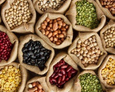 HarvestPlus Beans Curbing Malnutrition