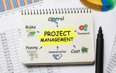 What are Microsoft's Project Management Options?