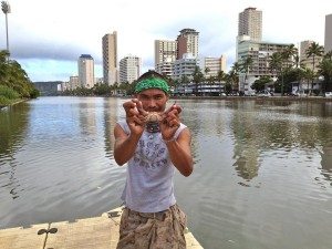 Who Does Care About the Ala Wai Canal?