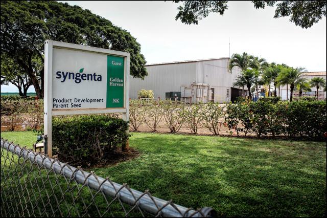 The Syngenta headquarters on Kauai.