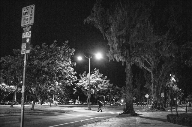 Homeless Waikiki Kapiolani Park black & white