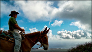 Ian Lind: The Crazy Lease Fight Over Molokai Mule Rides
