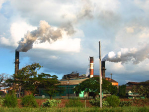 HC&S Fined $600K For Emissions