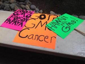 Hawaii County Council Passes GMO Ban