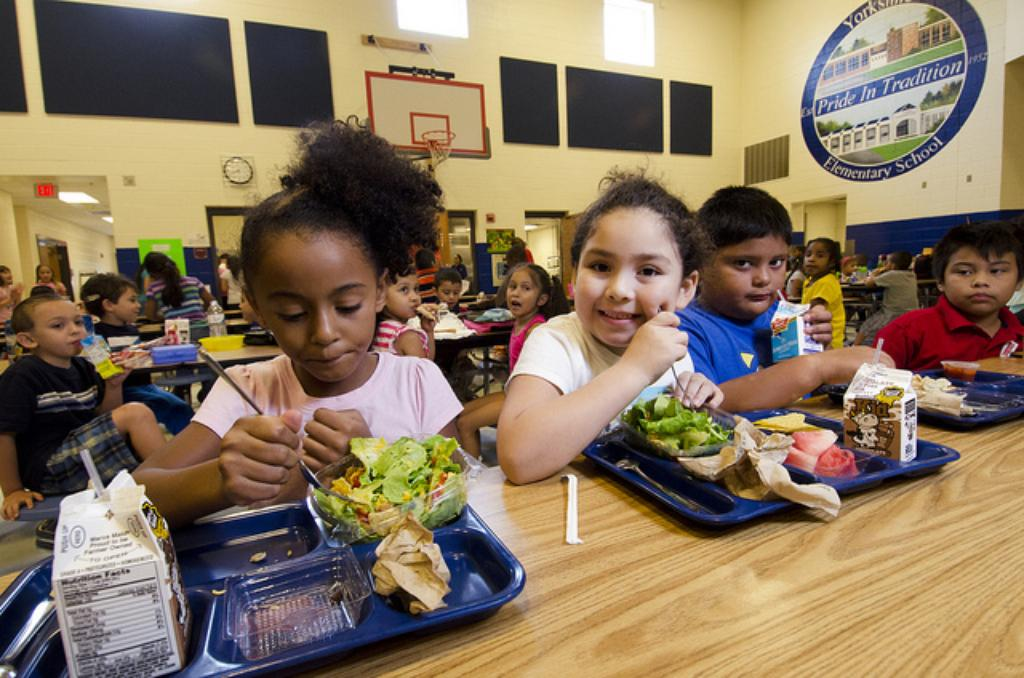 Hawaii DOE to Charter Schools: Figure Out Your Own Food