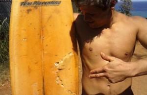 Hawaii's Instaweek: A Shark, Wayne's World and Gay Marriage Vote Preps