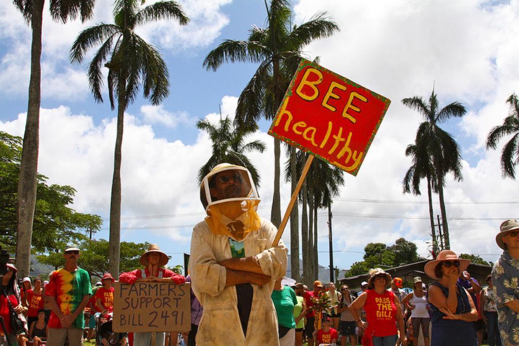 Kauai County Crosses the Rubicon, Council Passes Pesticide and GMO Bill