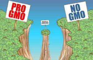 State, Kauai County Plan $100K Study of Pesticide Use on GMO Crops