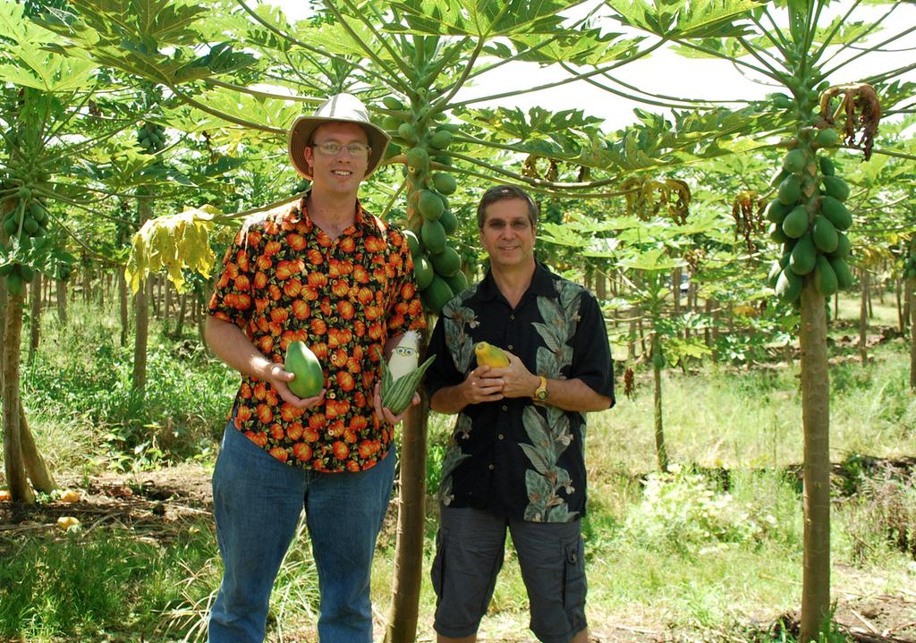 Will the GMO Debate Consume Hawaii?