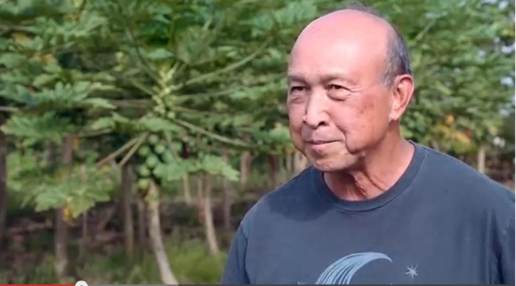 Hawaii Snapshot — A Legendary Scientist and His Papaya Dreams