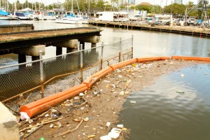 Ala Wai Canal: Oversight Is As Murky As The Water