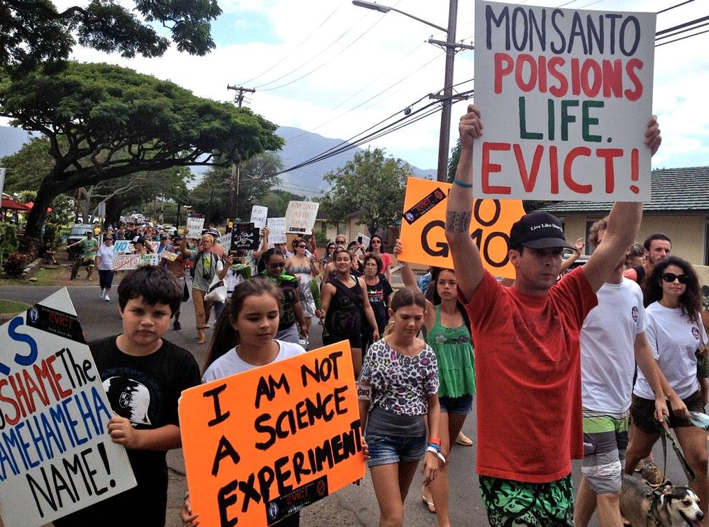 Hawaii Fight Over GMO Labeling Turns Ugly