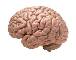 Health Beat: Not All Dementia Is Alzheimer's