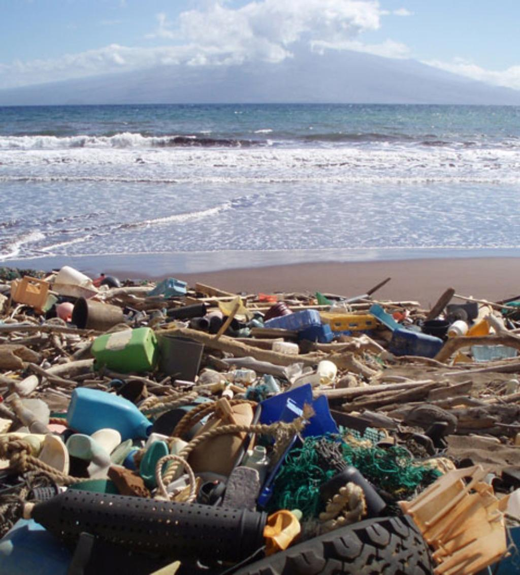 Superfund Designation Sought For Northwestern Hawaiian Islands