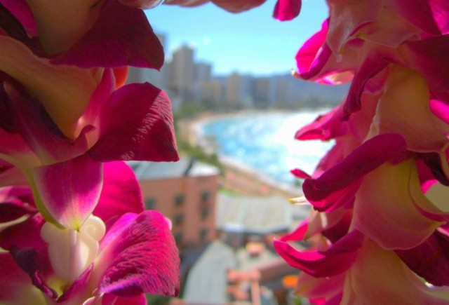 A lei frames Waikiki Beach.