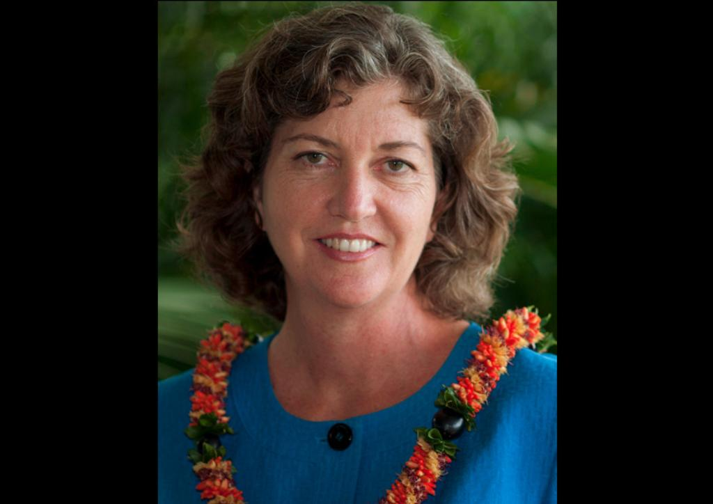 Laura Thielen's Hawaii Senate District 25 Survey