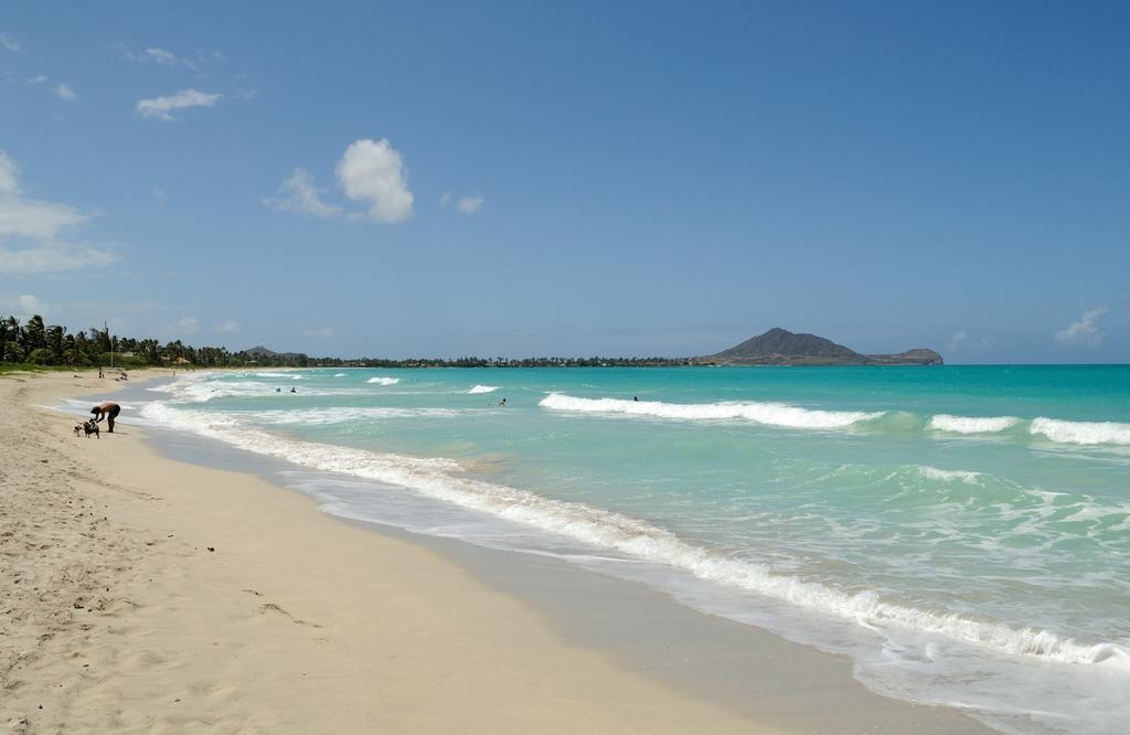 Beach Ban for Business Vetoed by Honolulu Mayor