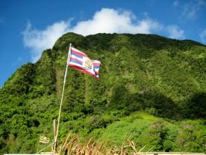 Scholar Criticizes Census Portait of Native Hawaiians