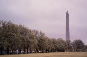 Civil Beat to Open Bureau in Washington, D.C.