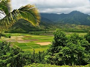 Civil Bytes: Travel-Planning Web App Builds Momentum On Island Time