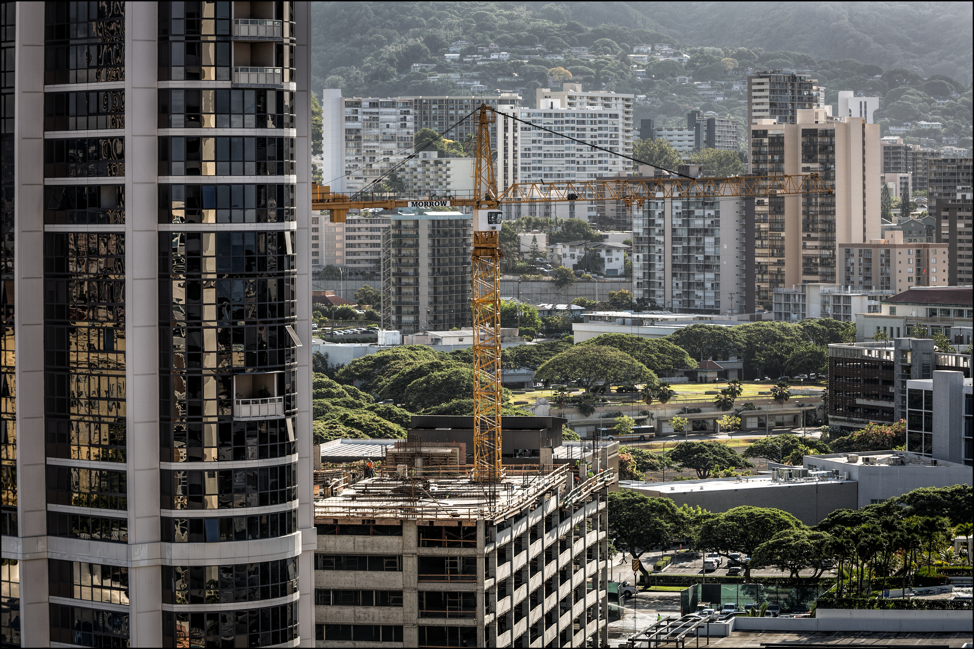Three Candidates, Three Views on Future of Fast-Growing Kakaako