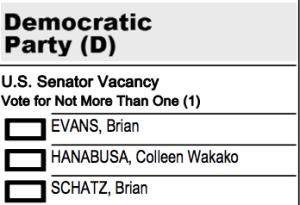 Hanabusa Schatz ballot detail 2014