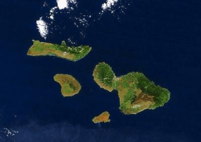 Critical Habitat Designated On Maui