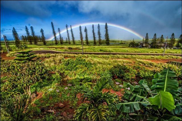 Rainbow in Maunaloa, Molokai