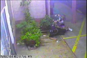 Watch: HPD Releases Cachola Surveillance Videos, 911 Tape