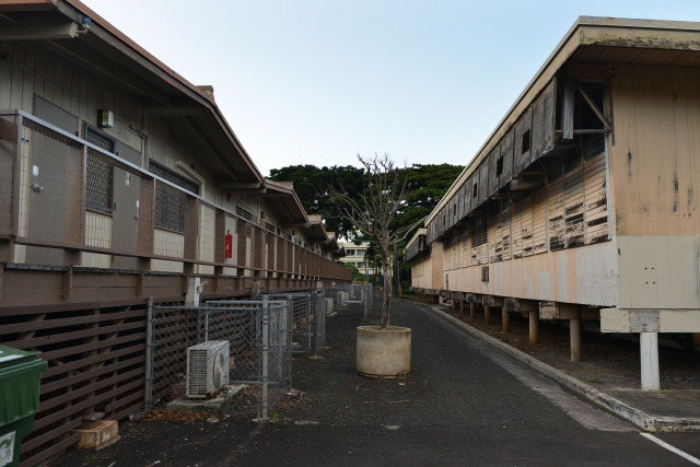 Right, University of Hawaii at Manoa's Lincoln Annex 1 located near portable buildings behind the Korean studies building. UH Manoa. 18 nov 2014. photograph Cory Lum.