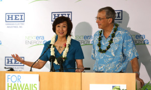 Is Hawaiian Electric Deal Good for Consumers?