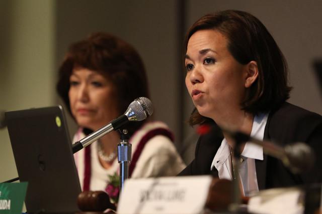 Senator Jill Tokuda Ways Means Chair