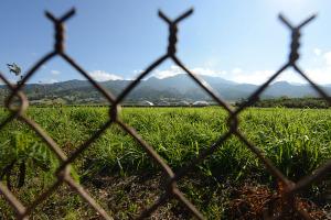 Former DuPont Worker Claims Retaliation For Pesticide Complaints