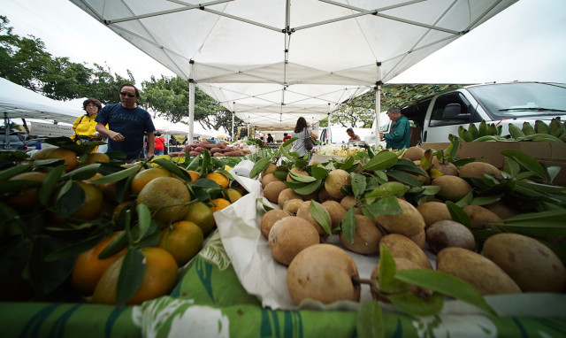 Local produce for sale at the Pearlridge Farmer's Market held near Sears. Saturday. 13 feb 2015. photograph Cory Lum/Civil Beat