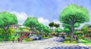 Denby Fawcett: Making It Easier to Build in Rural Oahu
