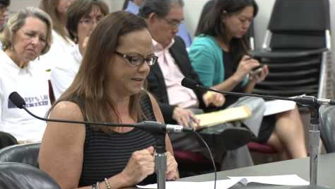 Marsys-Law-Testimony