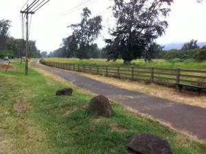 Curt Sanburn: Land Use Shenanigans on the Windward Side