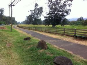 Curt Sanburn: Land Use Shenanigans on the Windward Side