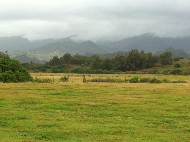 Malaekahana pastures