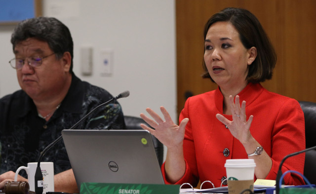 Senate Ways and Means committee Chair Senator JIll Tokuda gestures during hearing. 1 april 2015. photograph Cory Lum/Civil Beat