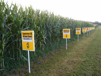 Why The GMO Food Labeling Debate Is Not Over