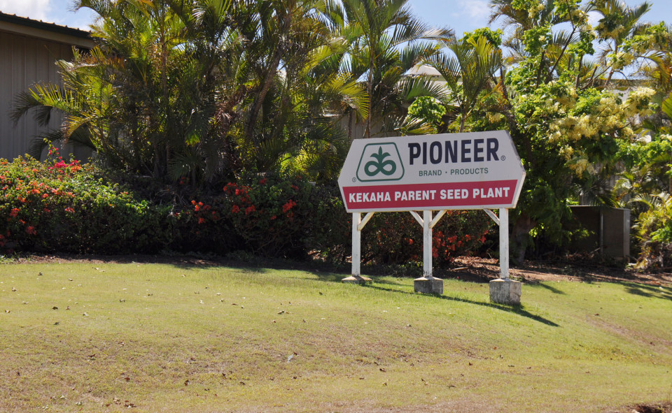 DuPont's Demand For Medical Waiver Clouds Kauai Pesticide Suit