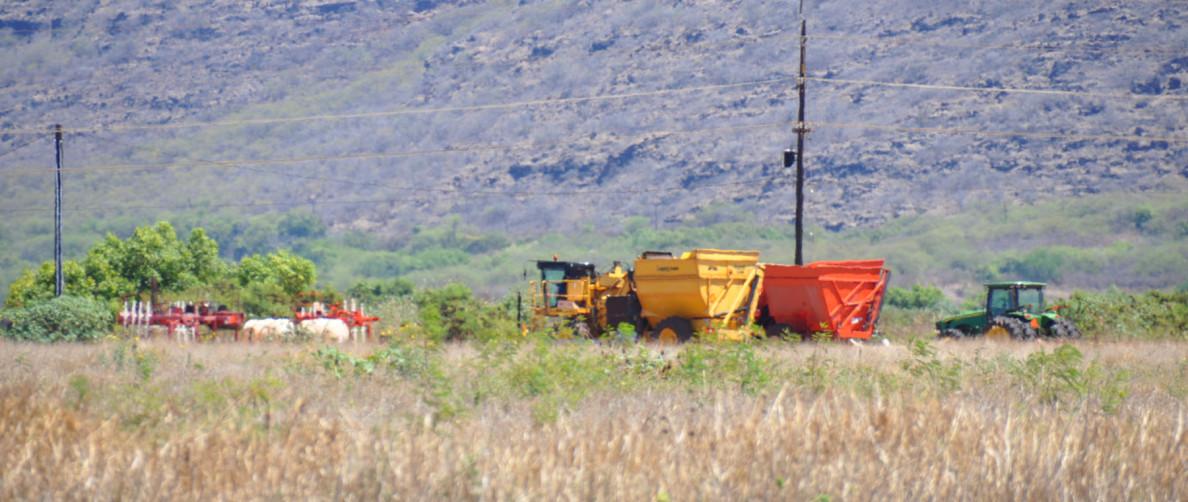 Kauai Pioneer Seed Industry GMO Pesticides