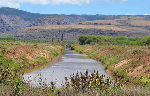 Kauai Seed Industry GMO Pesticides