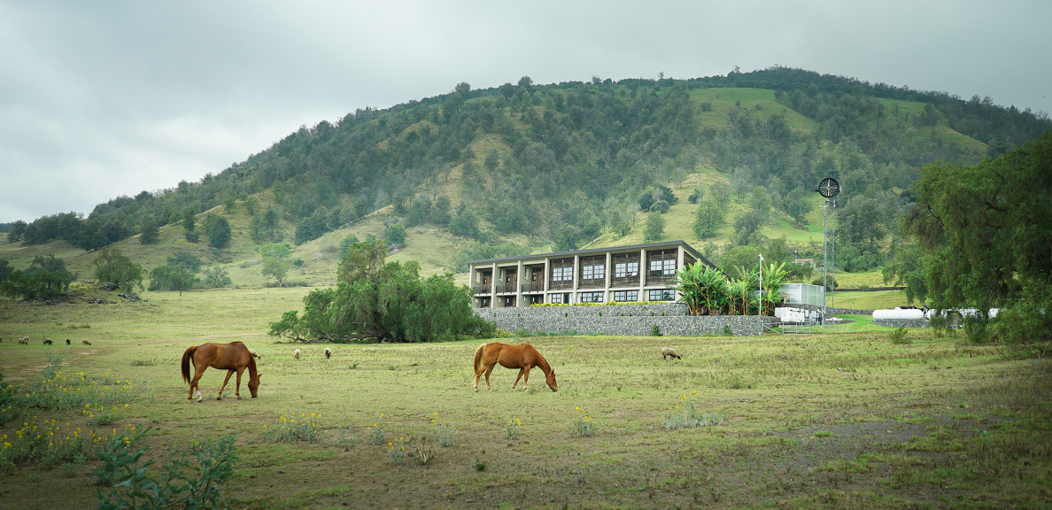 Henk Rogers' Pu'u Wa'aWa'a Ranch. Hawaii energy story. 1 july 2015. photograph Cory Lum/Civil Beat