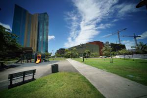 Neal Milner: An Idyllic Niche In Kakaako